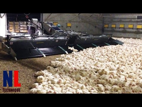 Modern Farming Technology with Cool Machines for The Highest Productivity
