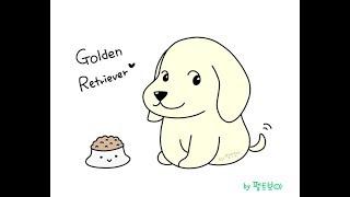 골든 리트리버 그리기 강좌 How to Draw Golden Retriever #417