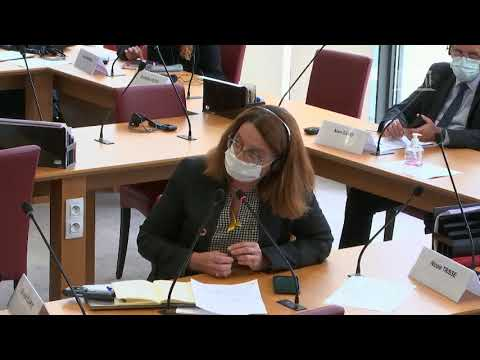 Commission des affaires étrangères : Mme Svetlana Tikhanovskaïa