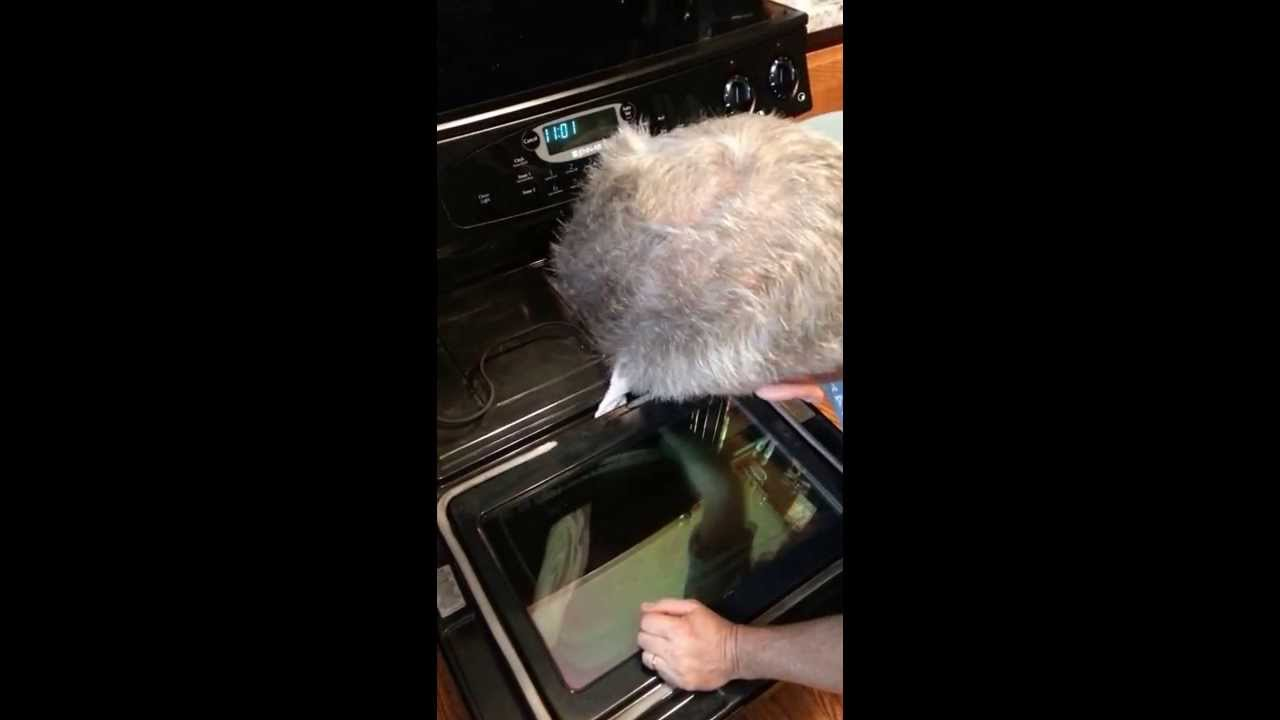 Cleaning Inside Glass On Oven Door Without Taking Apart