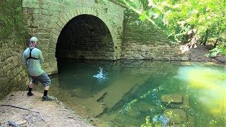 CREEK Fishing in a TUNNEL for ANYTHING That Will Bite