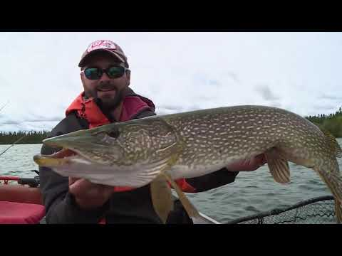 Lawrence Bay Lodge | Linders Fishing
