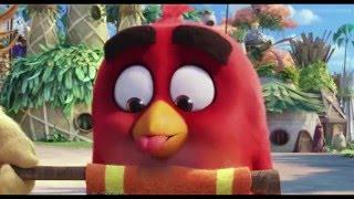 Angry Birds в кино Русский Трейлер 2016 в HD качестве