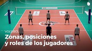 Las zonas, las posiciones y los roles de los jugadores. | Voleibol