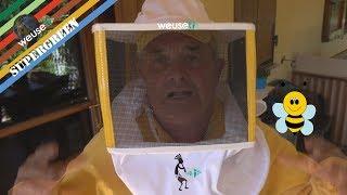 4 of 10 - Strumenti dell'apicoltore - Zigrinatore, affumicatore, apiscampo e maschera di protezione