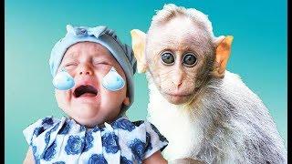 Sabah Uyandım Hapşu Şarkısı-Bebek Şarkıları-Babies Song-Nursery Rhyme-Çocuk Şarkıları