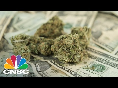 Warren Buffet Of Weed On Why You Should Invest In Cannabis | CNBC
