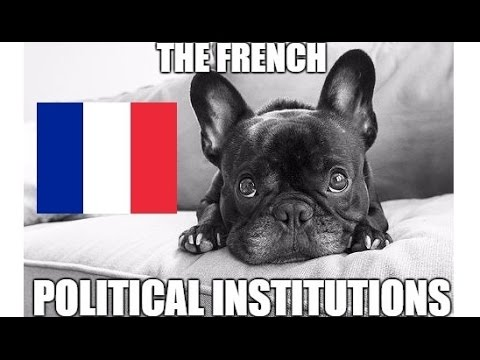 The French Political Institutions
