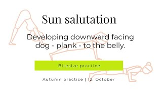 Sun Salutation KEYS Building d-dog to belly 12-10-2020