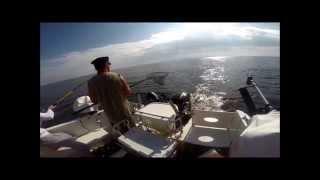 видео Рыболовная база «Ситинка»