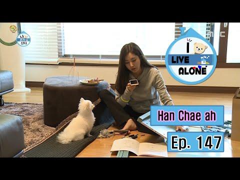 Pets That Returned Home After Being LostKaynak: YouTube · Süre: 13 dakika40 saniye