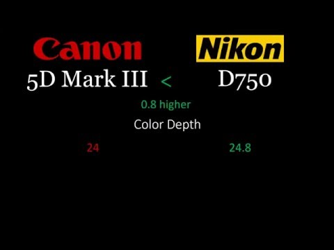 Canon 5D Mark III vs Nikon D750