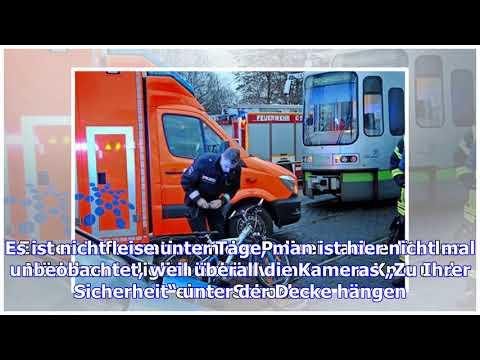 """Berliner """"tatort"""" – die logik des wolfsrudels – haz – hannoversche allgemeine"""