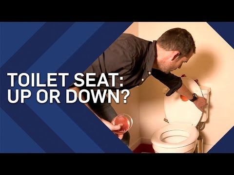 Toilet Seat Up Or Down? | Brit Lab