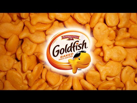 Best Snack Goldfish Cheddar Crackers My Favorite