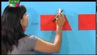 La relación entre área y perímetro Matemática 4º y 5º grado