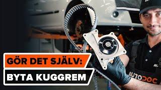 Lär dig hur du löser problem med din bil