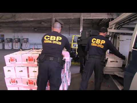 U.S. Customs & Border Protection Cargo Inspection