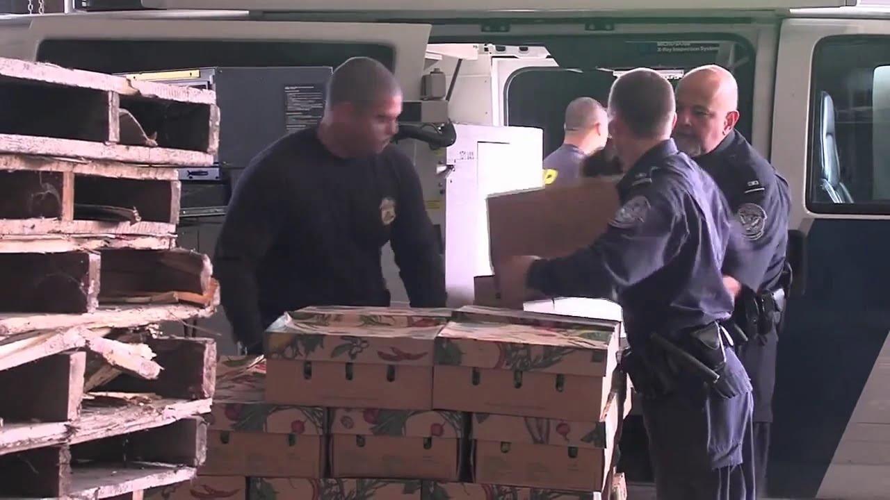 U.S. Customs & Border Protection Cargo Inspection - YouTube