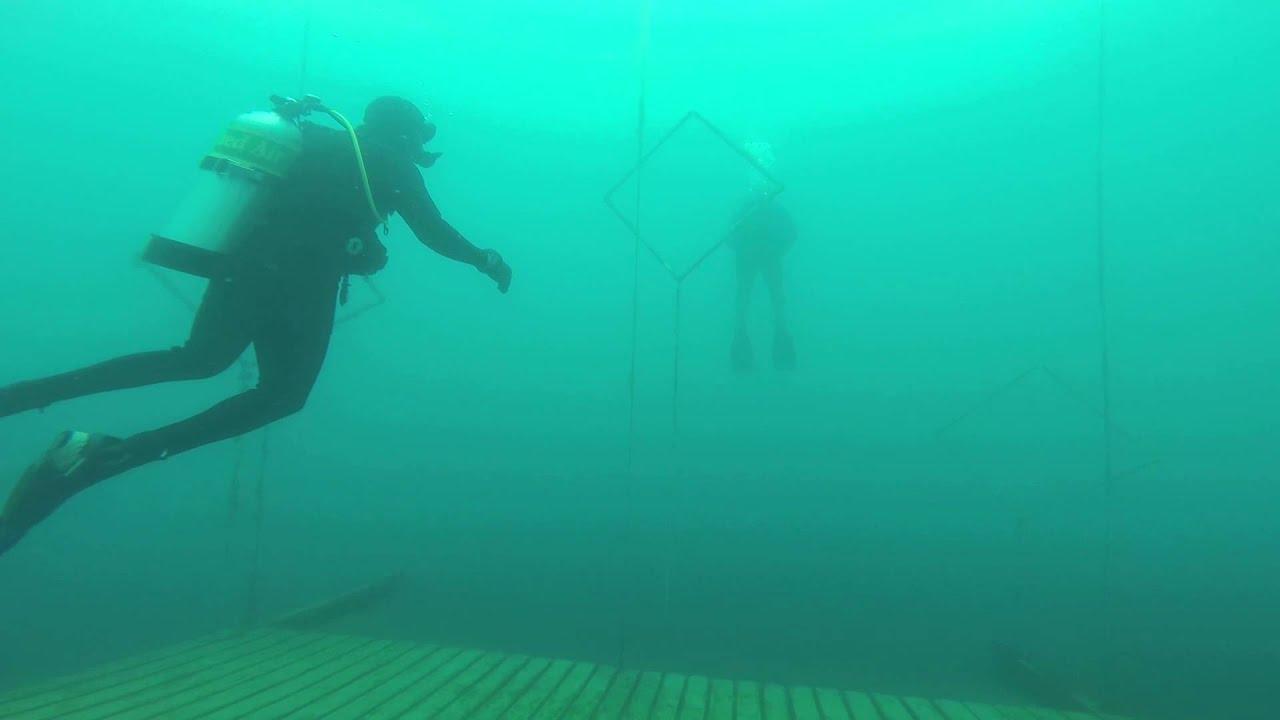 Padi Advanced Scuba Diving Certification In Nj Youtube