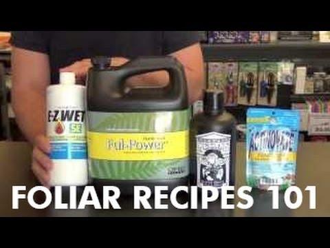neem oil mixing instructions