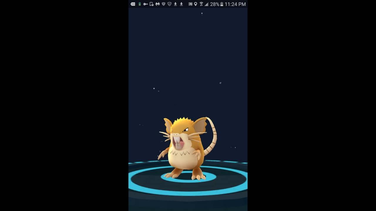 INSANE Pokemon go Evolution - evolve Rattata to Raticate - YouTube