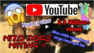 Mizo dogs mating