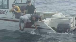 Jervis Bay 2009- State of Origin Marlin