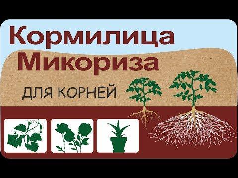 Вопрос: Что за биопрепарат Земля-Матушка Какие отзывы?