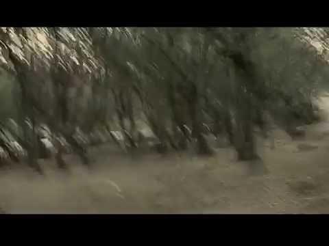 """Trailer """"Nonsenso"""". Regia di Fausto Massa"""