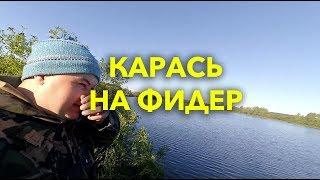 Рыбалка на карася на фидер - Пруд Кадышево в Мордовии