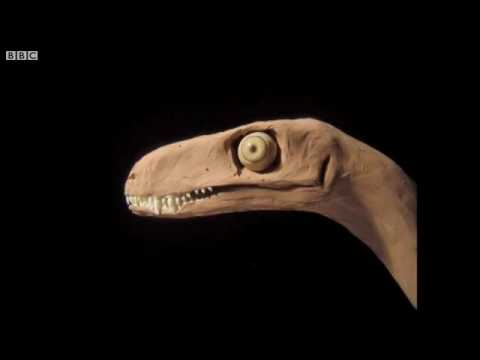Dinosaur from Triassic period discovered in Argentina   BBC News