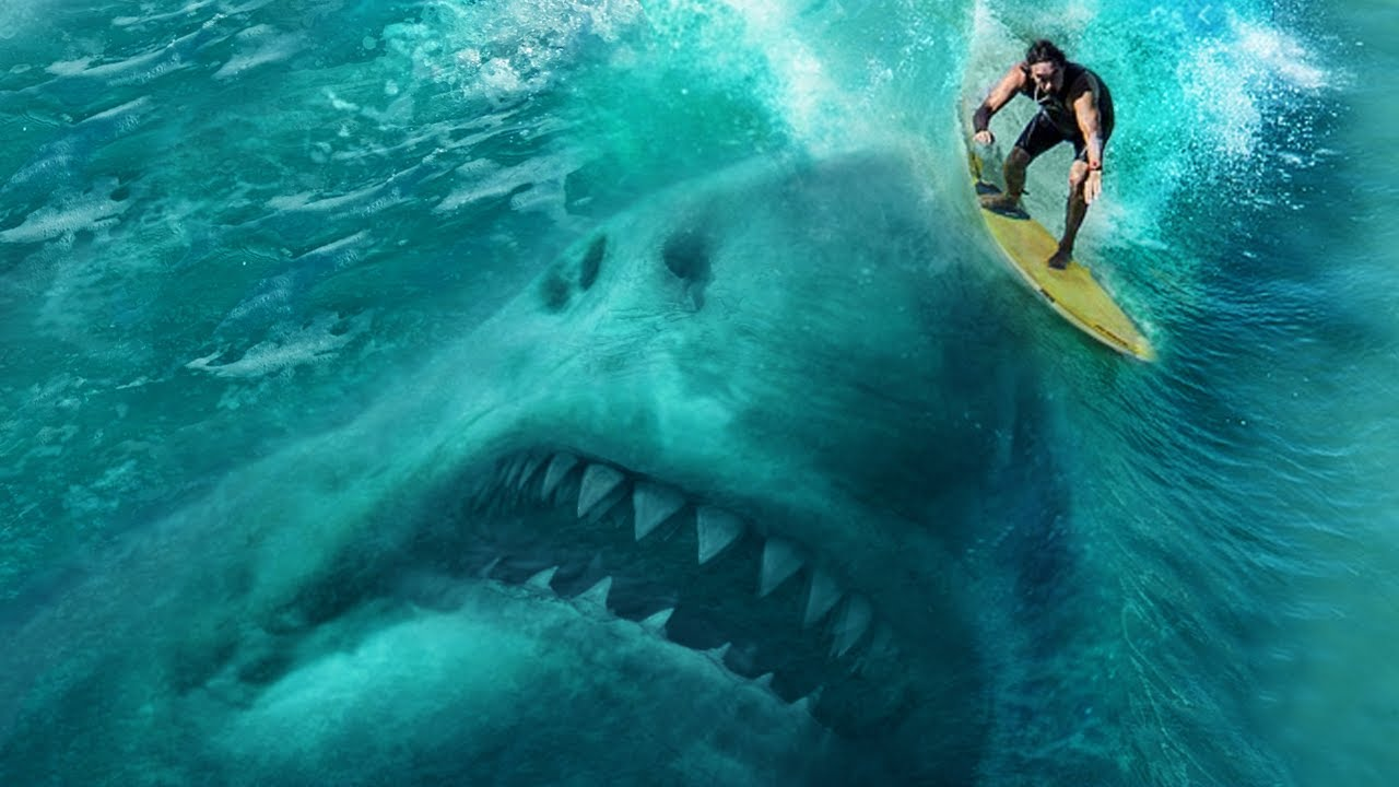 Download World's Most Shark Infested Waters