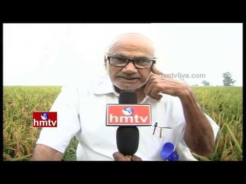 Foreigners Visit Organic Farms In Warangal | Frozen Semen Bull Station | Nela Talli | HMTV