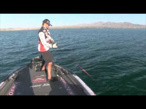 Justin Lucas boats a 3 lb fish #3 BASS Live www.bassmaster.com