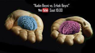 Kadın Beyni x Erkek Beyni