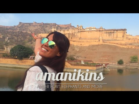 Amanikins in Jaipur, india! Vlog 2/3