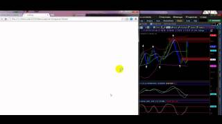 The Craziest trading i ever seen for binary options-trading made simple
