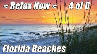 FLORIDA BEACHES #4 Ocean Sounds Relaxing Sunset Waves DVD Relax  Clearwater Beach Relaxation Video