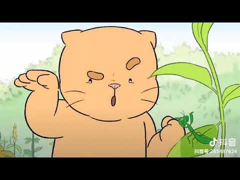 Tik Tok: Hoạt hình về những chú mèo dễ thương và hài hước trên Tik Tok ( Phần 2 )