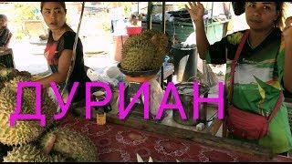 Дуриан что же это такое и как его едят ? полный обзор Durian