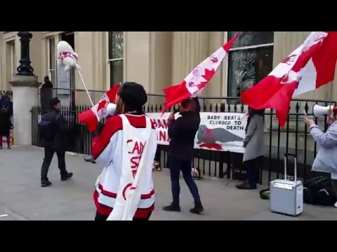 Seal Demo outside Canadian High Commission in London