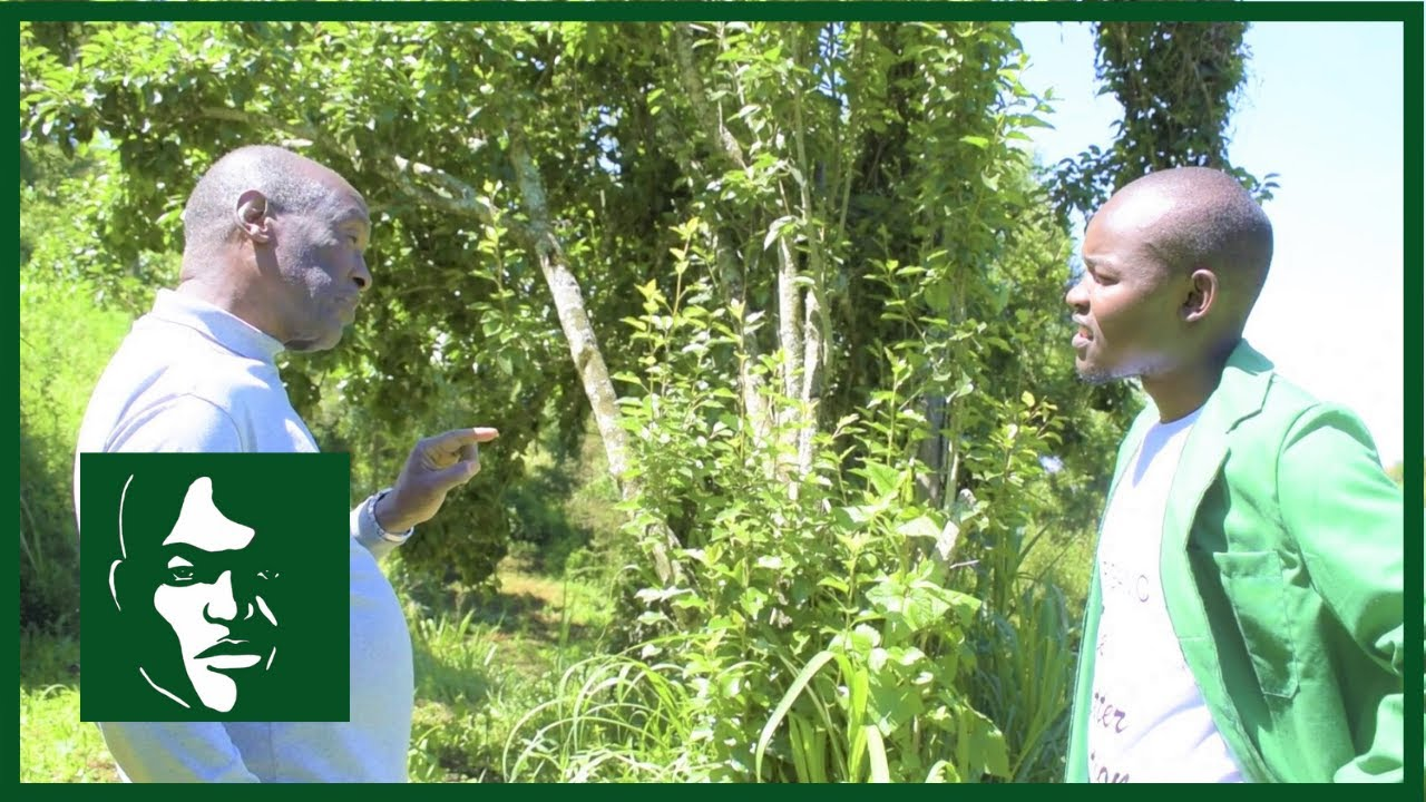 The Organic Guy In Conversation With The Herbal Medicine Doctor (Part 1)| #TheOrganicGuy #Herbalmedicine