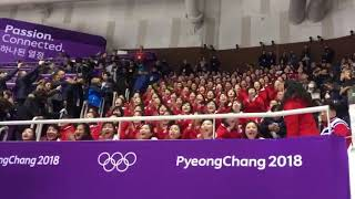 North Korean fans cheering at the olympics