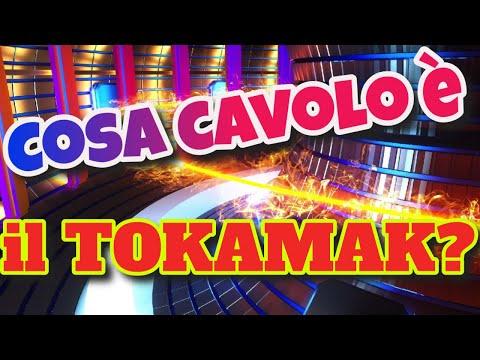 Tokamak: il reattore