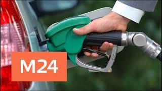 Смотреть видео Снижения акцизов на топливо. Подешевеет ли бензин? - Москва 24 онлайн