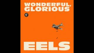 "Eels - ""Kinda Fuzzy"" from Wonderful Glorious"
