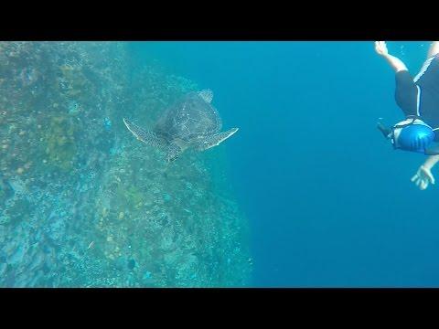 2015-05 Galapagos - Sea