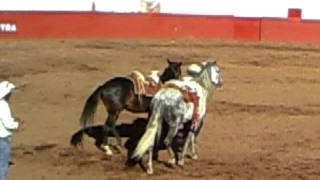Jaripeo ranchero en Jacona michoacán(1)