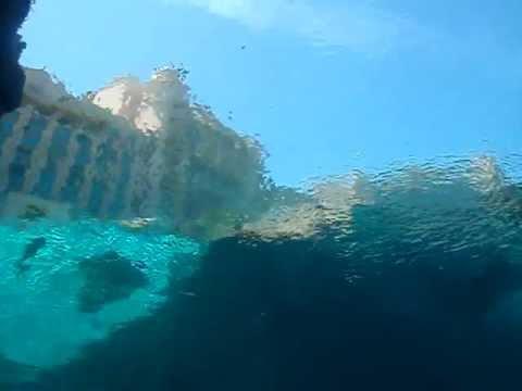 Underwater view of the Atlantis Hotel Nassau, Bahamas ...